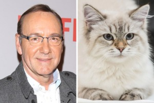 kevin-spacey-nine-lives-2-shot